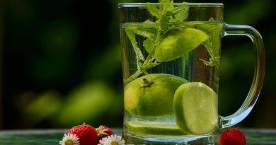 Verre de boisson à l'eau, au citron et à la menthe