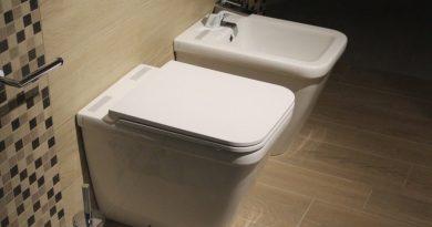 WC et bidet dans des toilettes